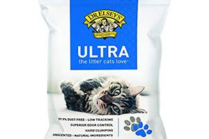 Best Cat Litters For Odor