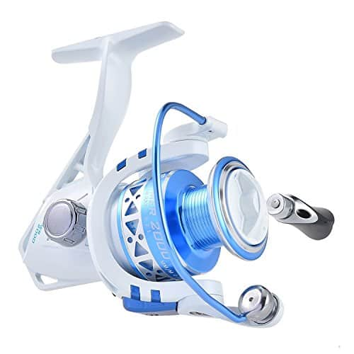 KastKing Summer and Centrol Spinning Reels